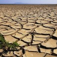 Dopo le allarmanti analisi del Servizio Informativo Agrometeorologico Siciliano che hanno messo in evidenza la perdurante siccità presente sulla nostra isola da almeno 24 mesi, anche la Coldiretti lancia l'allarme. […]